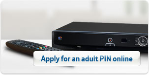 Apply for an adult PIN online