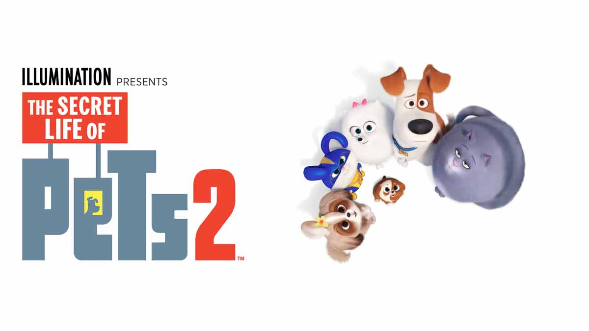 Why Everyone Should Watch Animated Sequel The Secret Life Of Pets 2 Bt Tv